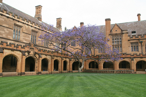 Animal Science university of sydney foundation studies